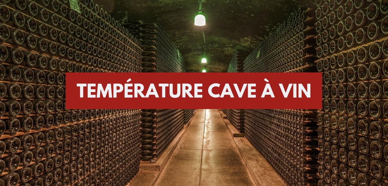 Une Cave A Vin température d'une cave à vin : la température idéale - vin
