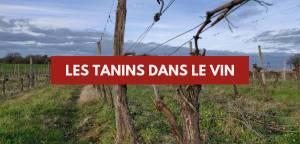 Les tanins dans le vin
