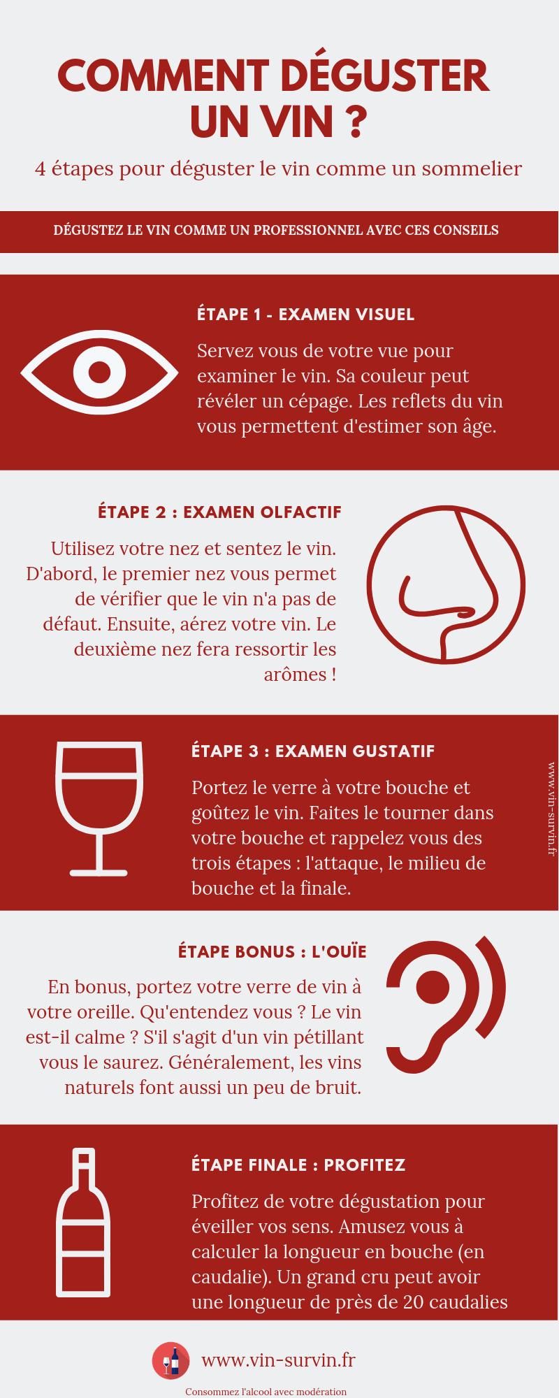 infographie - comment déguster un verre de vin