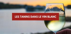 Tanin vin blanc