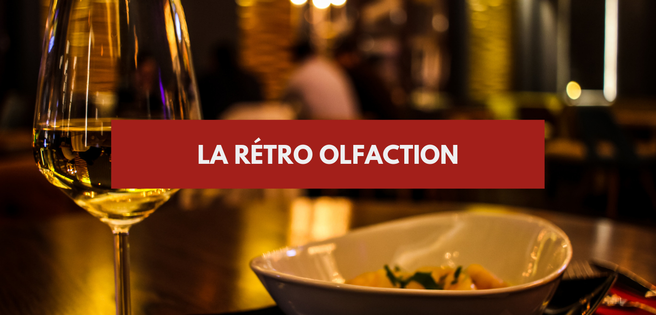 La rétro olfaction