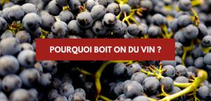 Pourquoi boit-on du vin – Fabrizio Bucella