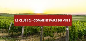 Read more about the article Comment faire du vin ?