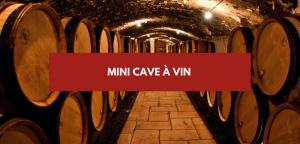 Mini cave à vin
