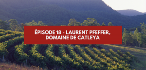Épisode 18 – Laurent Pfeffer, Catleya Wines