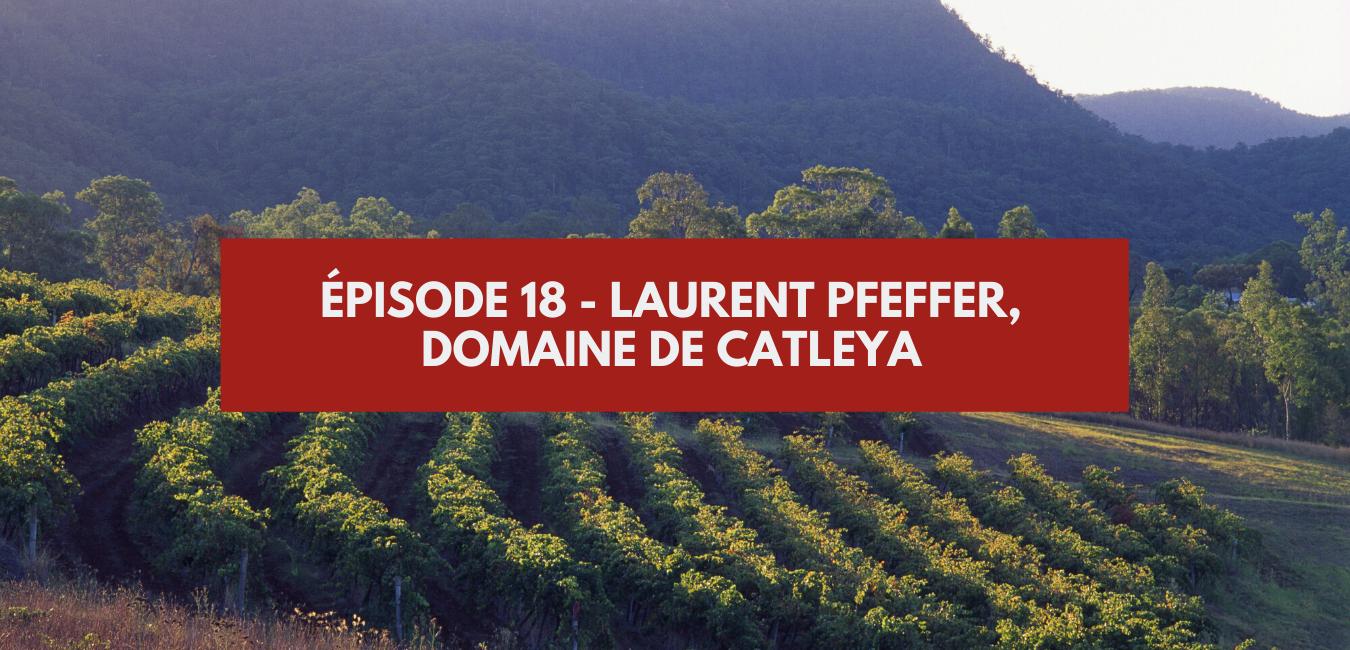 Épisode 18 – Laurent Pfeffer, Catleya Wines