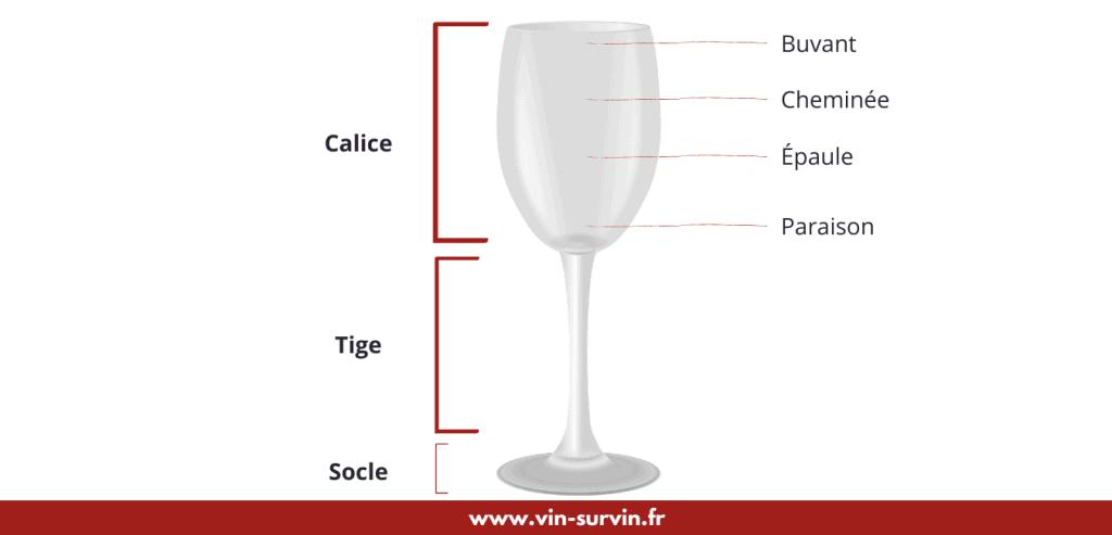 les différentes parties du verre à vin