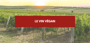 Read more about the article Vin vegan
