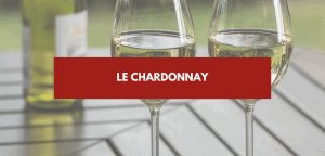 Read more about the article Chardonnay