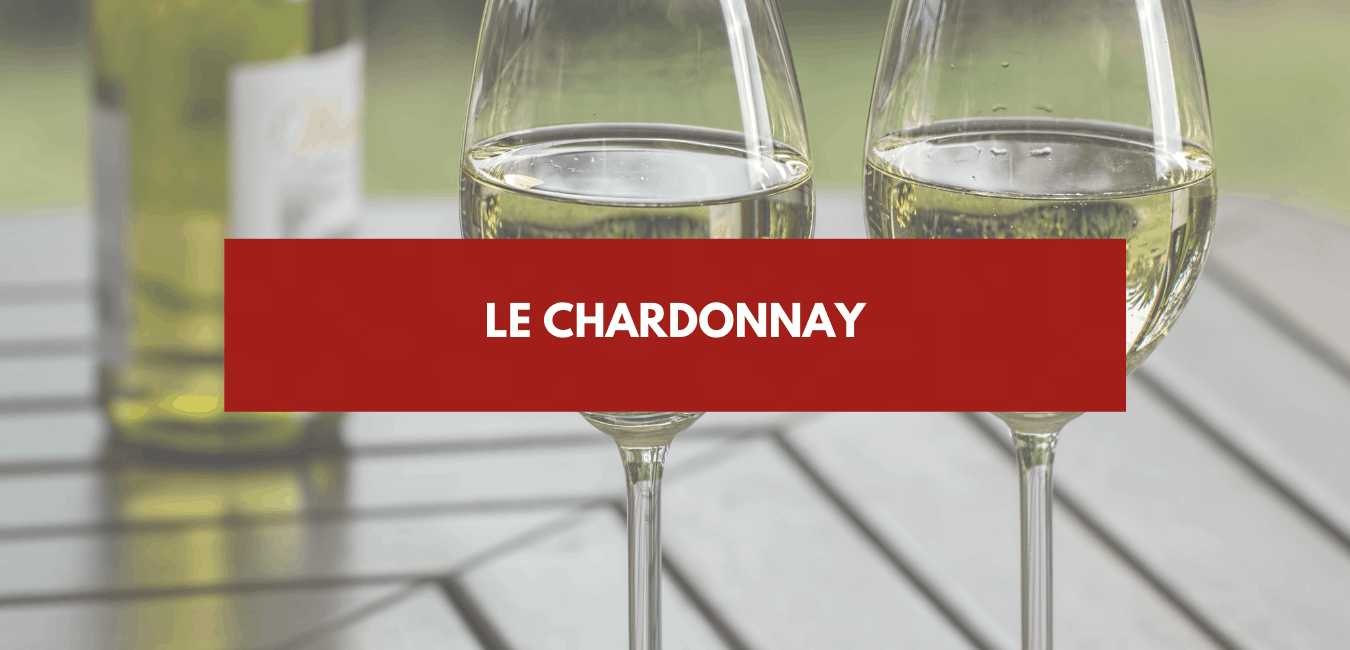 You are currently viewing Chardonnay
