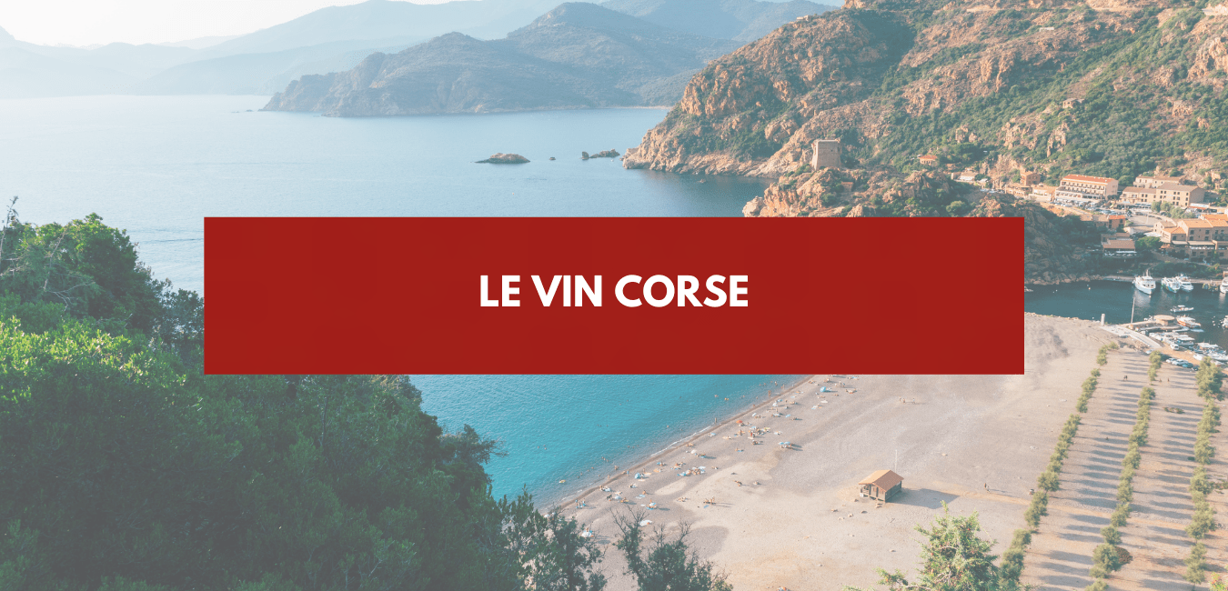 You are currently viewing Vin corse