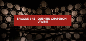 Read more about the article Épisode #45 – Quentin Chaperon – U'Wine